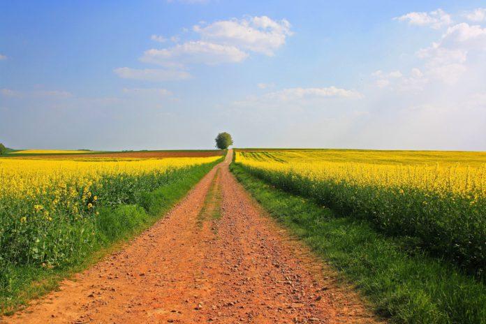 dotace na rozvoj venkova